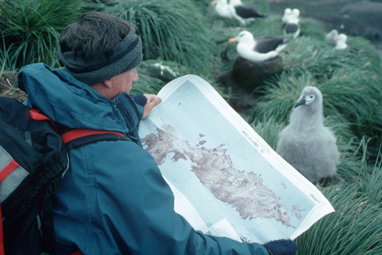 Mike Powell studying the BAS Bird Island map. © British Antarctic Survey, Miriam Lorwerth.