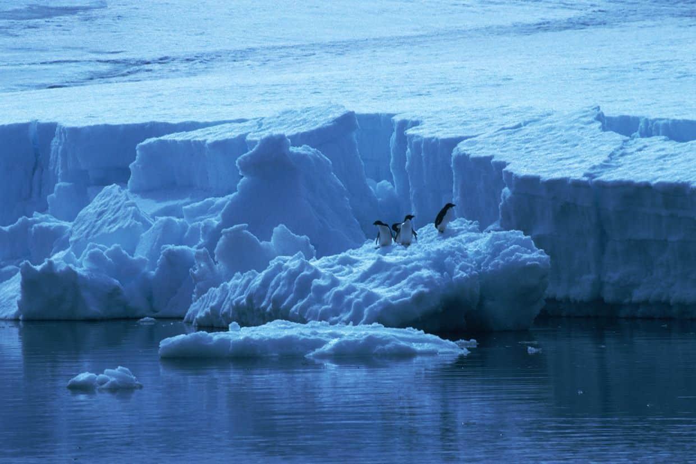 iceberg calving away from glacier