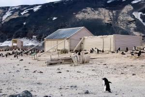 Carsten Borchgrevink's Hut, Cape Adare