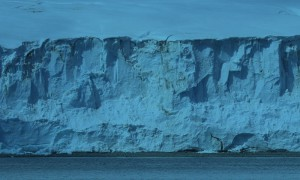 view of antarctic ice shelf from the sea
