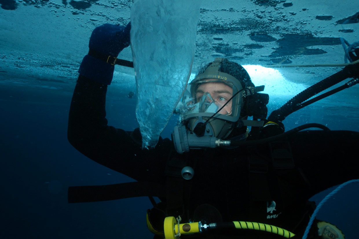 Diver under ice looking at sea brine column.