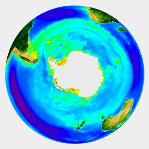 Chlorophyll concentration of the Southern Ocean measured by the SeaWiFS project.